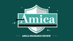 Amica Name and Logo