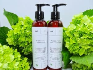Bottles of Cel MD Microstem Shampoo and Conditioner