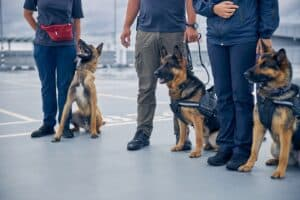 Global K9 Protection Group Dogs and Handlers