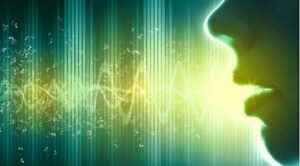 Mouth and Voiceprint