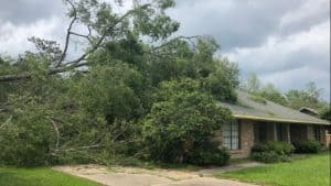Wind Damage: Tree Fallen Over onto House Roof