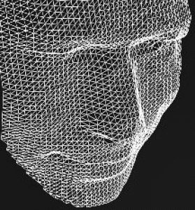 Wire Mesh Outlining Human Face
