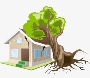 Drawing of Tree Fallen on House