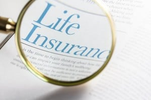 "Magnifying Glass on Words ""Life Insurance"""